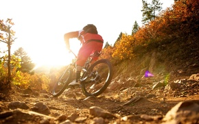 Picture nature, athlete, Cycling, mountain bike