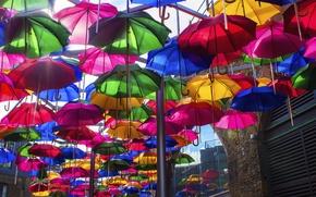 Picture the city, umbrella, street, paint, home, umbrella