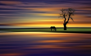 Picture style, background, tree, horse