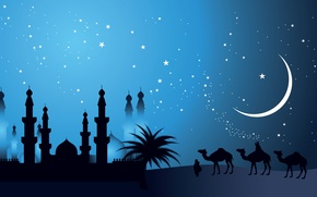 Picture minarets, the Bedouins, a month, camels, stars, East, dome