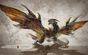 Picture dragon, wings, shadow, texture, rage, texture, dragon, shadow, rage, Innova, 4game, fogeym, Dragon's Prophet, Innova, ...