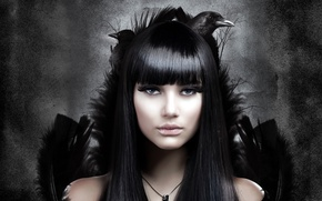 Picture girl, birds, background, hair, feathers, crows