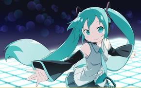 Picture vocaloid, Hatsune Miku, long hair