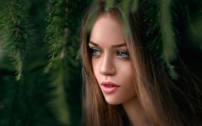 Picture portrait, eyes, sponge, Daria, Dasha, George Chernyadev