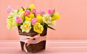 Wallpaper spring, yellow, colorful, tulips, pink, bow, March 8, flowers, beautiful, Spring, Tulips