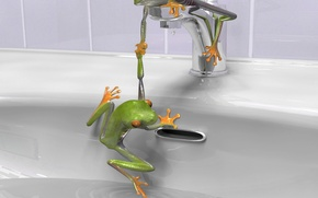Wallpaper crane, sink, Frogs