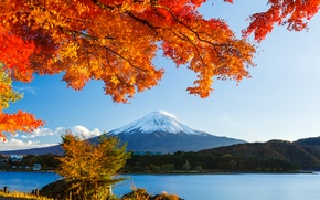 Picture autumn, forest, the sky, leaves, snow, trees, lake, Japan, mountain, Fuji