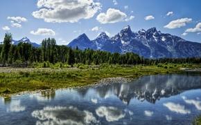 Wallpaper nature, mountains, stream, forest, obloka