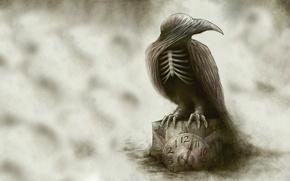 Wallpaper fantasy, watch, art, Raven