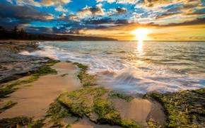 Picture sea, tropics, dawn, coast, Hawaii, USA