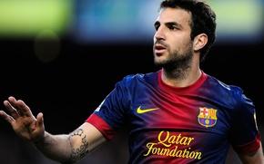 Picture Sport, Football, Barcelona, Fabregas, Fabregas, Football, Barca, Cesc, Cesc Fabregas