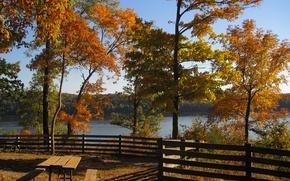 Picture autumn, trees, lake, Nature, gazebo, trees, nature, autumn, lake, fall