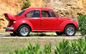 Picture machine, beetle, car, red, the bushes, Volkswagen, Volkswagen Beetle