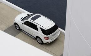 Picture Mercedes-Benz, 2008, BlueTEC, ML320