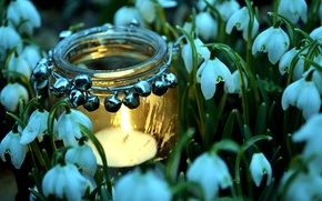 Picture fire, spring, snowdrops, candle, jar