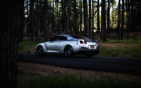 Picture GTR, silver, Nissan, sportcar, Nissan