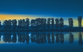 Picture trees, reflection, river, shore, morning