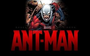 Picture fiction, rage, ant, costume, helmet, superhero, marvel, comic, MARVEL, Ant-man, Paul Rudd, Paul Rudd, Ant-Man, …