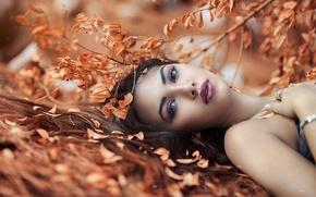 Picture autumn, girl, makeup, Alessandro Di Cicco, Desired