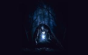 Picture forest, darkness, despair, armor, shield, knight, Dark Souls 2, sword., Dark Souls II