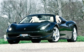 Picture grass, trees, Ferrari, grass, convertible, Ferrari, 458, italia, Italy, tree, cabrio