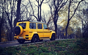 Picture Yellow, Autumn, Mercedes, Mercedes Benz, SUV, G63, MANSORY GRONOS
