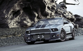 Picture Shelby, GT500, Mustang, muscle car, Ford, Ford Mustang GT500