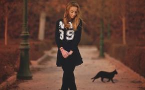 Picture autumn, girl, figure, alley, in black, black cat