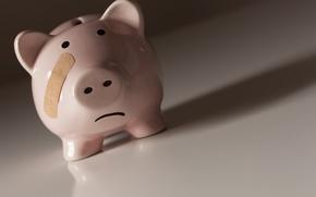 Picture money, economy, piggy