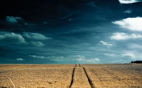 Wallpaper road, the sky, Field, clouds