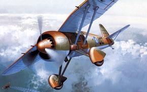 Picture figure, art, P.24, Greek air force, Polish single-seat fighter, PZL