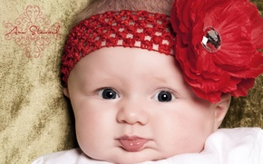 Picture flower, girl, headband