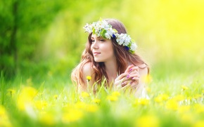 Picture grass, look, girl, flowers, reverie, brown hair, wreath
