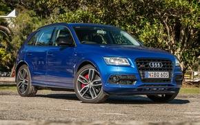 Picture Audi, Audi, crossover, SQ5
