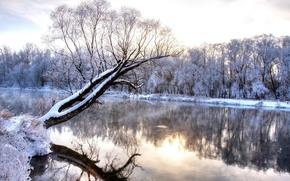 Picture Winter, Trees, Snow, River