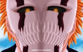 Picture look, mask, guy, Bleach, Bleach, Kurosaki Ichigo, art, Shinigami, sekaini