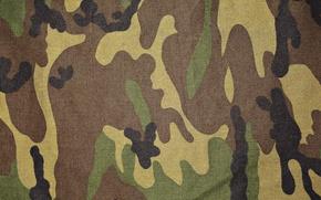 Picture canvas, color, matter, fabric, spot, khaki