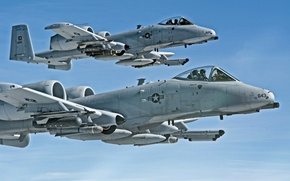 Picture pair, flight, A-10, stormtroopers, Thunderbolt II, The thunderbolt II