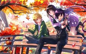 Picture autumn, leaves, girl, anime, art, guys, swordsouls, noragami, yato, two hiyori, yukine