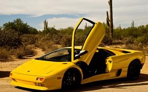 Picture the sky, yellow, desert, cacti, Voitur, sky, desert, diablo, yellow, Lamborghini, Diablo, cactus