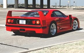 Picture red, Ferrari, street, red, F40, Ferrari, street, f40, back