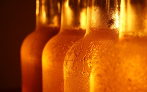 Picture glass, drops, beer, Bottle