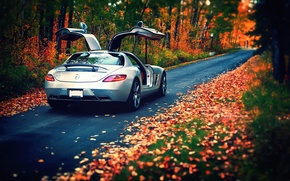 Picture autumn, leaves, Mercedes-Benz, AMG, SLS, rear, silvery