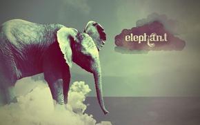 Picture style, elephant, cloud, Elephant