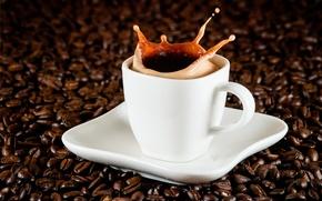 Picture foam, squirt, coffee, grain, splash, Cup, drink, saucer, espresso