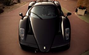 Picture black, Ferrari, supercar, supercar, Ferrari, black, enzo, front, Enzo