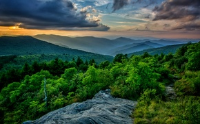 Picture forest, clouds, mountains, beautiful