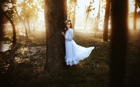 Picture girl, tree, dress, Ronny Garcia