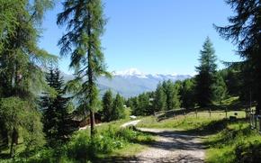 Picture road, summer, village, Alps