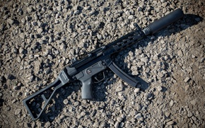 Picture weapons, background, muffler, the gun